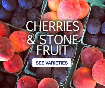 home-cherries