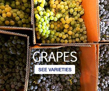 home-grapes